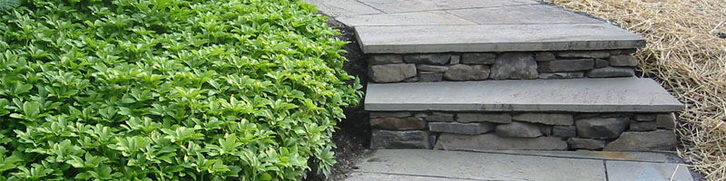 Flagstone Walkway and Steps