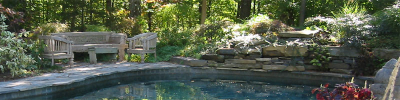 Flagstone Surrounding Pool